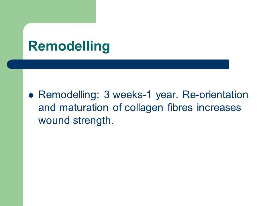 Remodelling Remodelling: 3 weeks-1 year.