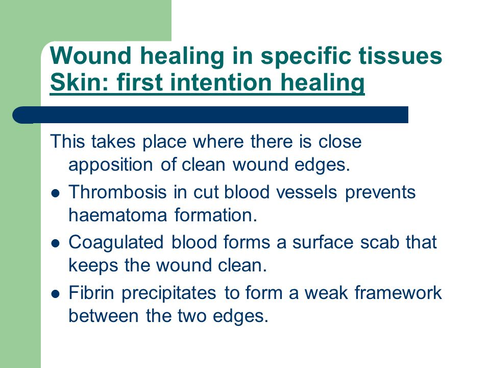 Wound healing in specific tissues Skin: first intention healing