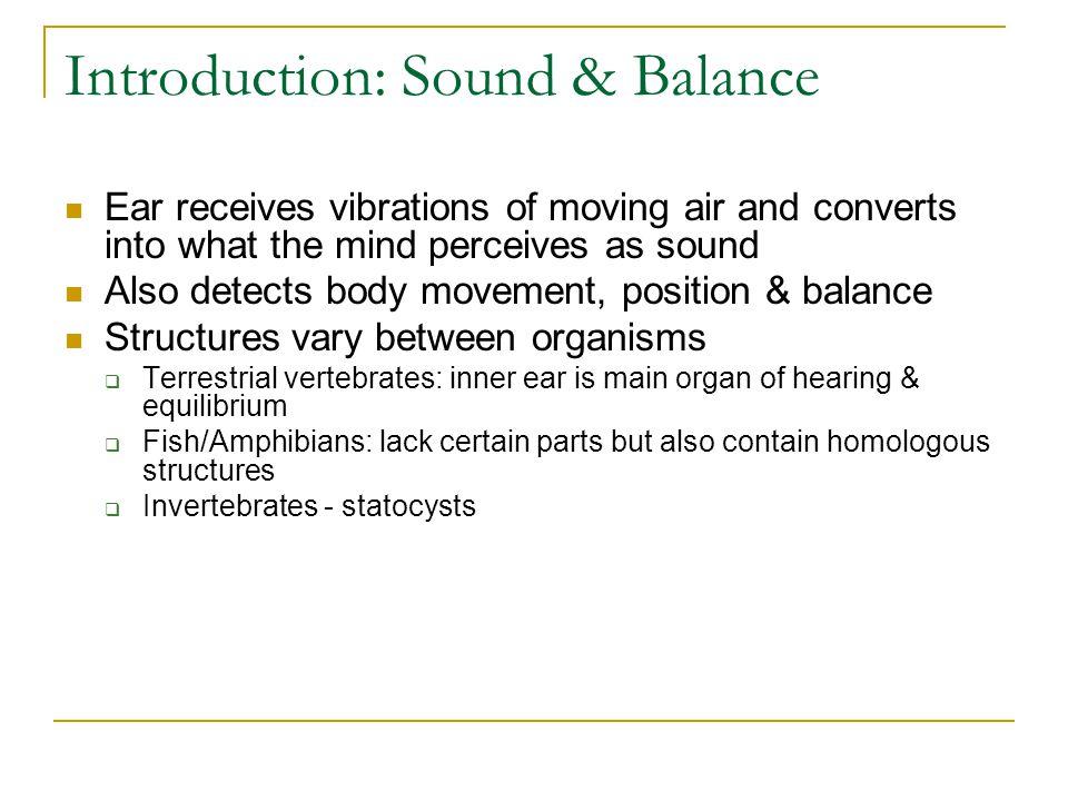 Introduction: Sound & Balance