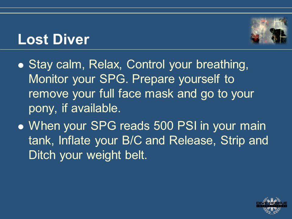 3/31/2017 Lost Diver.