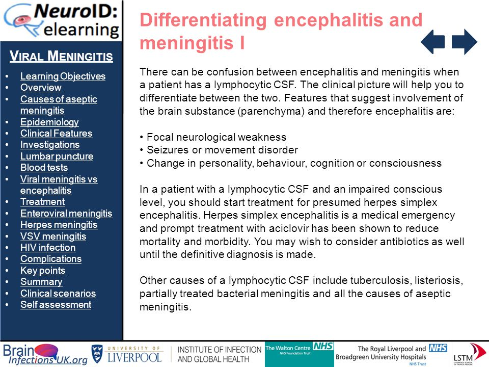 Differentiating encephalitis and meningitis I