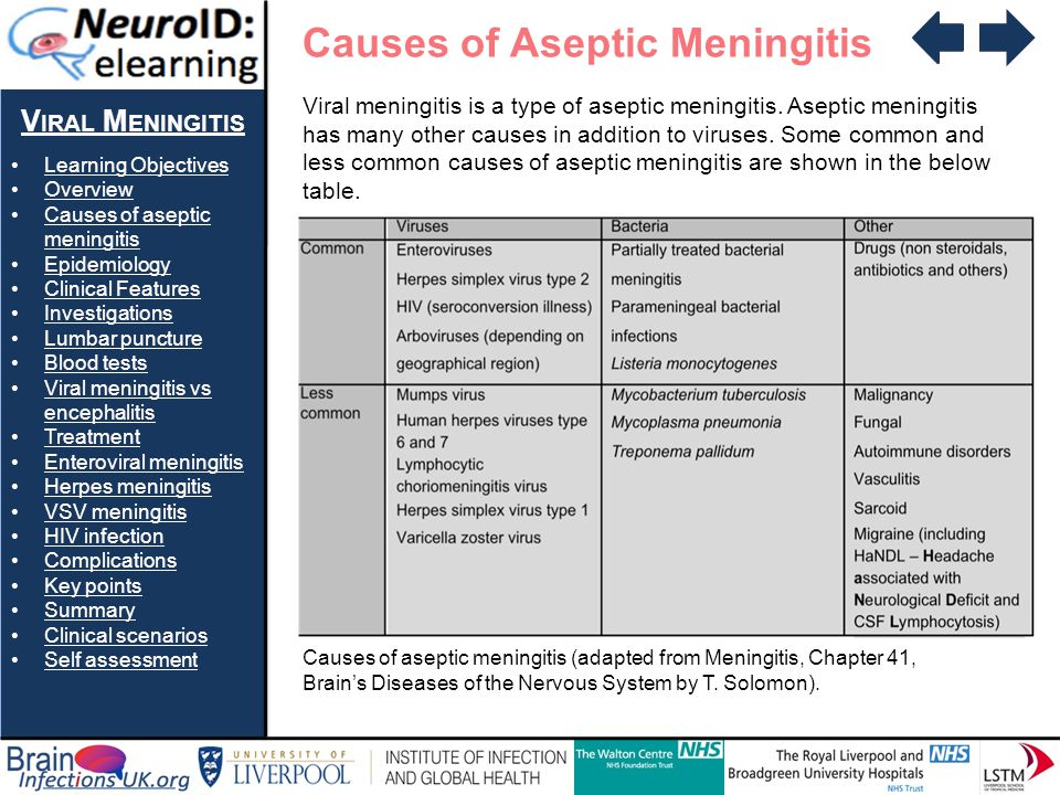 viral meningitis dr fiona mcgill viral meningitis - ppt download, Skeleton