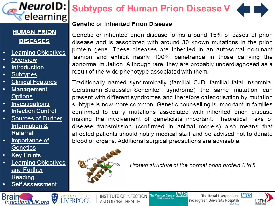 Subtypes of Human Prion Disease V