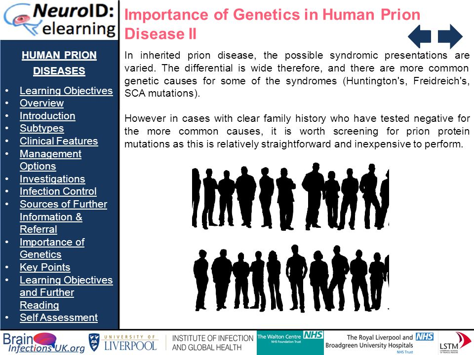 Importance of Genetics in Human Prion Disease II