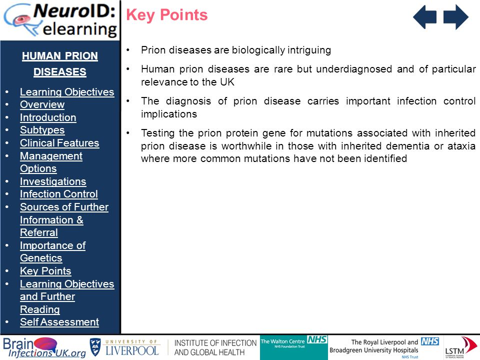 Key Points human prion diseases