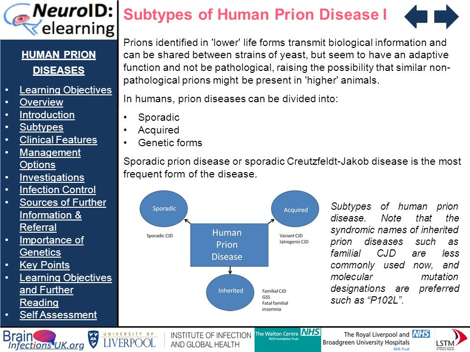 Subtypes of Human Prion Disease I