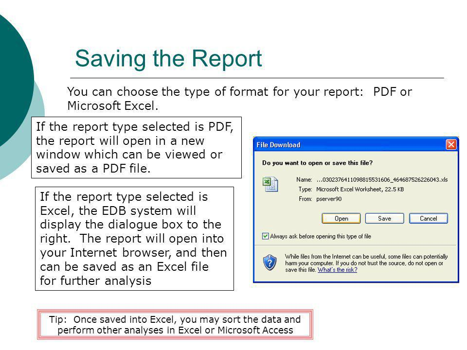 Saving the Report You can choose the type of format for your report: PDF or Microsoft Excel.