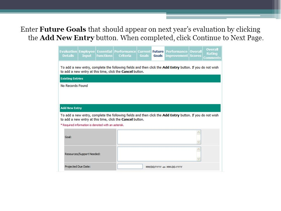 Enter Future Goals that should appear on next year's evaluation by clicking the Add New Entry button.
