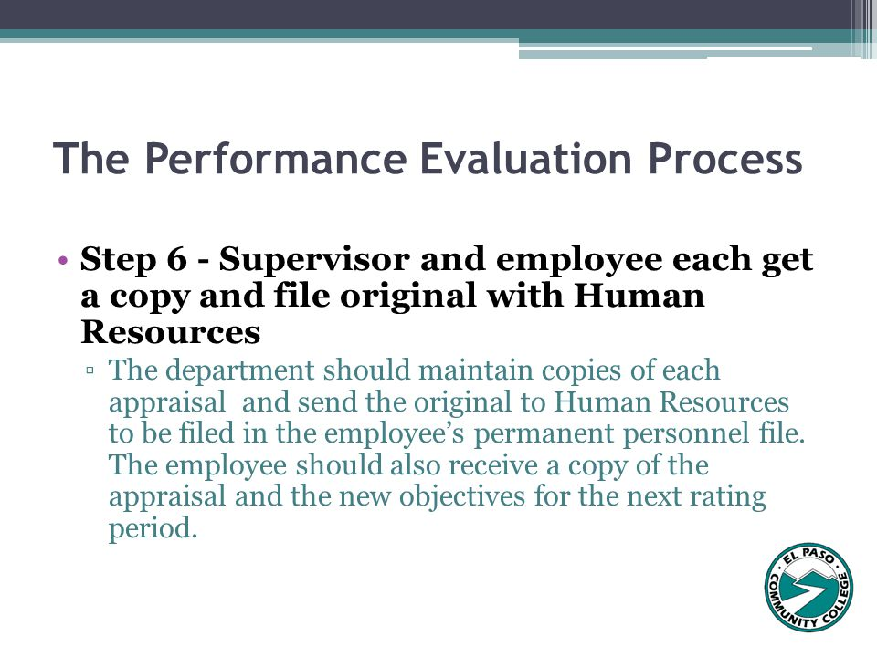 The Performance Evaluation Process