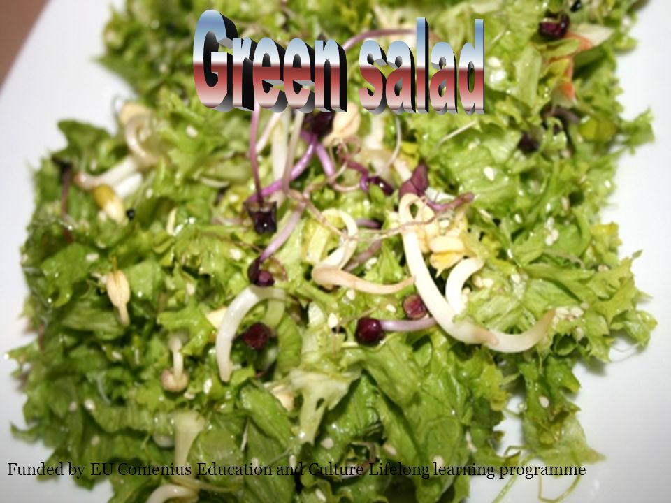 Green salad Funded by EU Comenius Education and Culture Lifelong learning programme