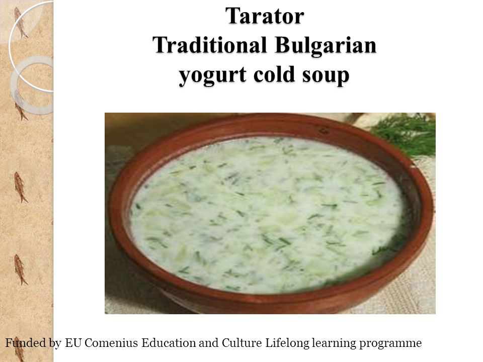Tarator Traditional Bulgarian yogurt cold soup
