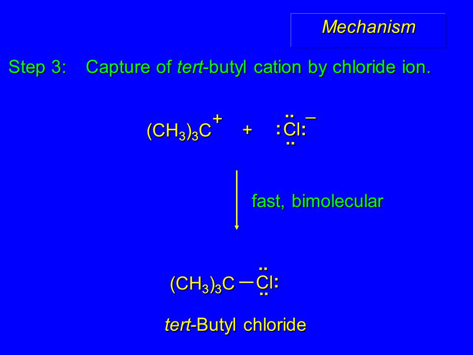 Step 3: Capture of tert-butyl cation by chloride ion.