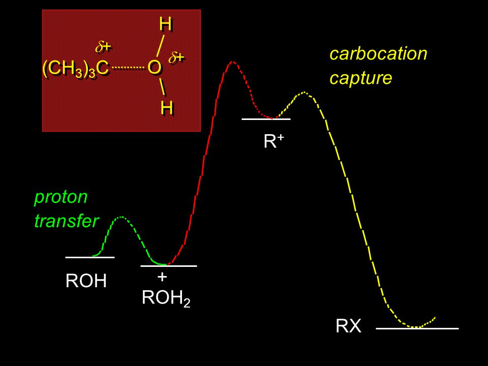 (CH3)3C + O H carbocation capture R+ proton transfer ROH2 + ROH RX 21