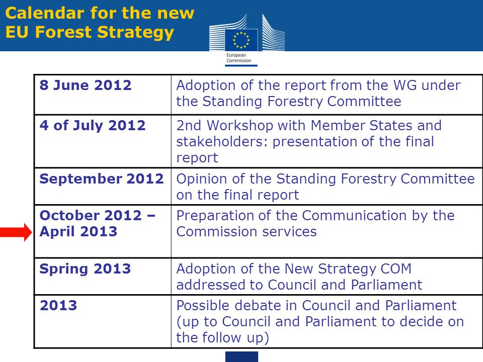 Calendar for the new EU Forest Strategy 8 June 2012