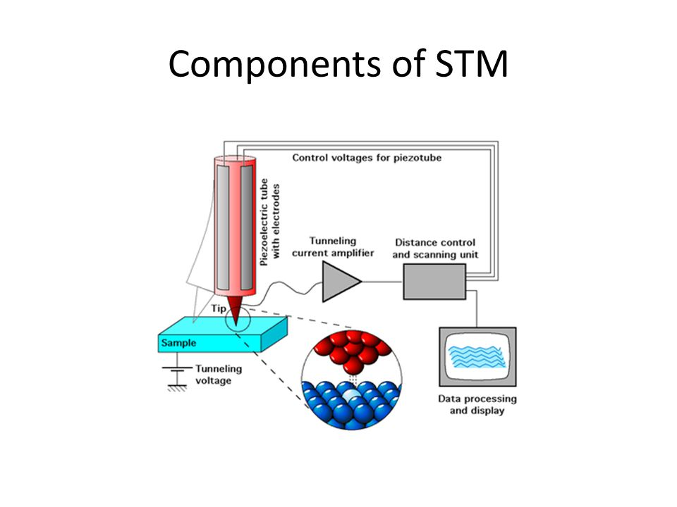 Components of STM