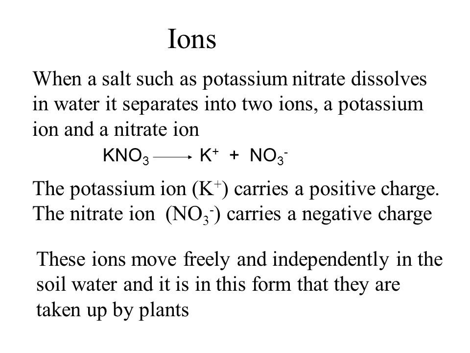 Ions When a salt such as potassium nitrate dissolves in water it separates into two ions, a potassium ion and a nitrate ion.