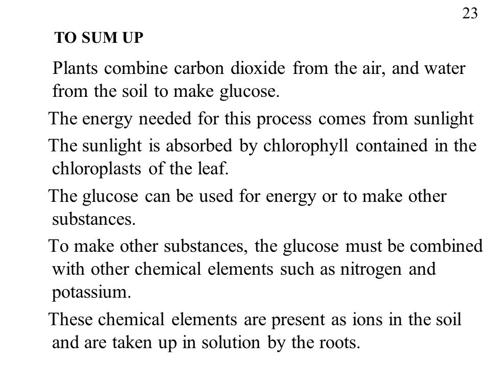 The energy needed for this process comes from sunlight