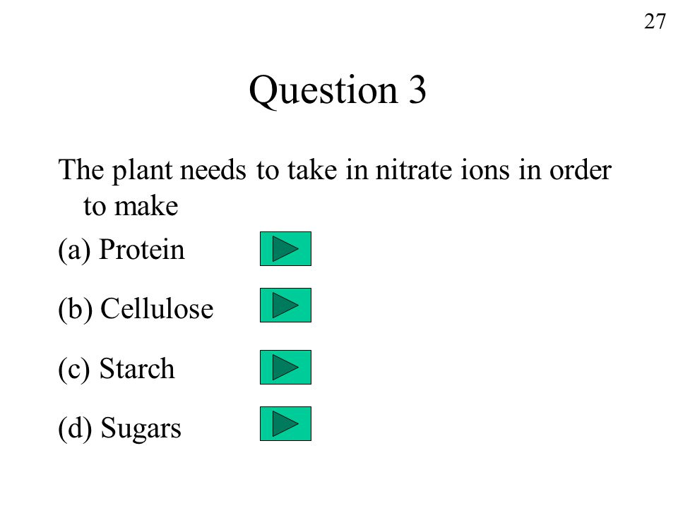 Question 3 The plant needs to take in nitrate ions in order to make