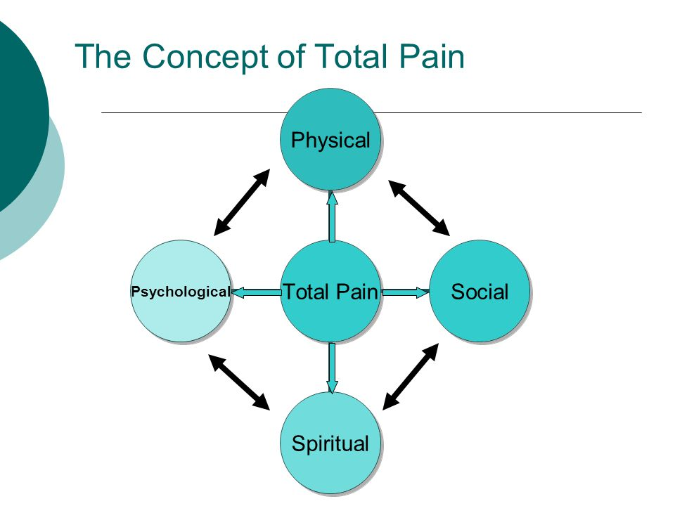 The Concept of Total Pain