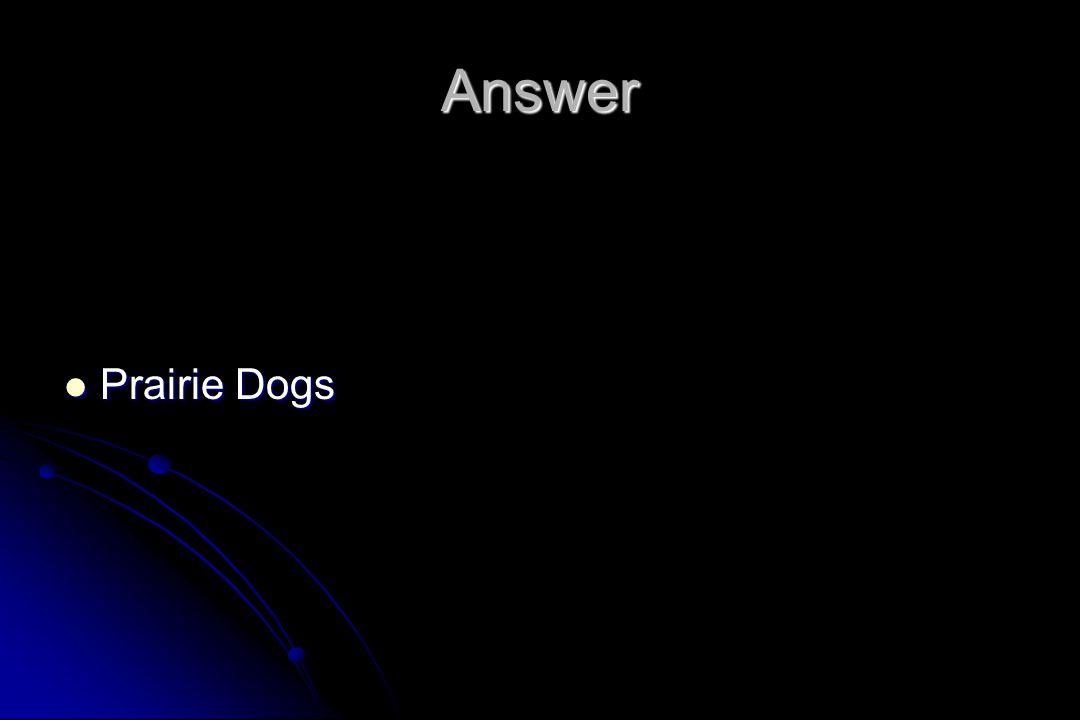 Answer Prairie Dogs