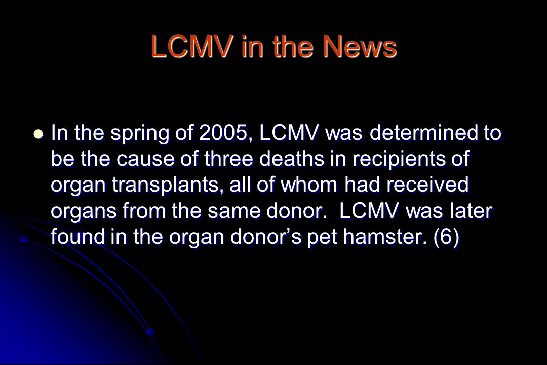 LCMV in the News