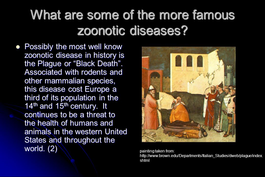 What are some of the more famous zoonotic diseases
