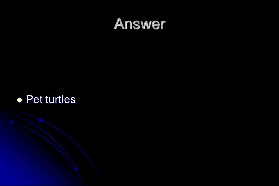 Answer Pet turtles
