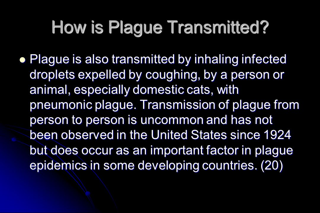 How is Plague Transmitted