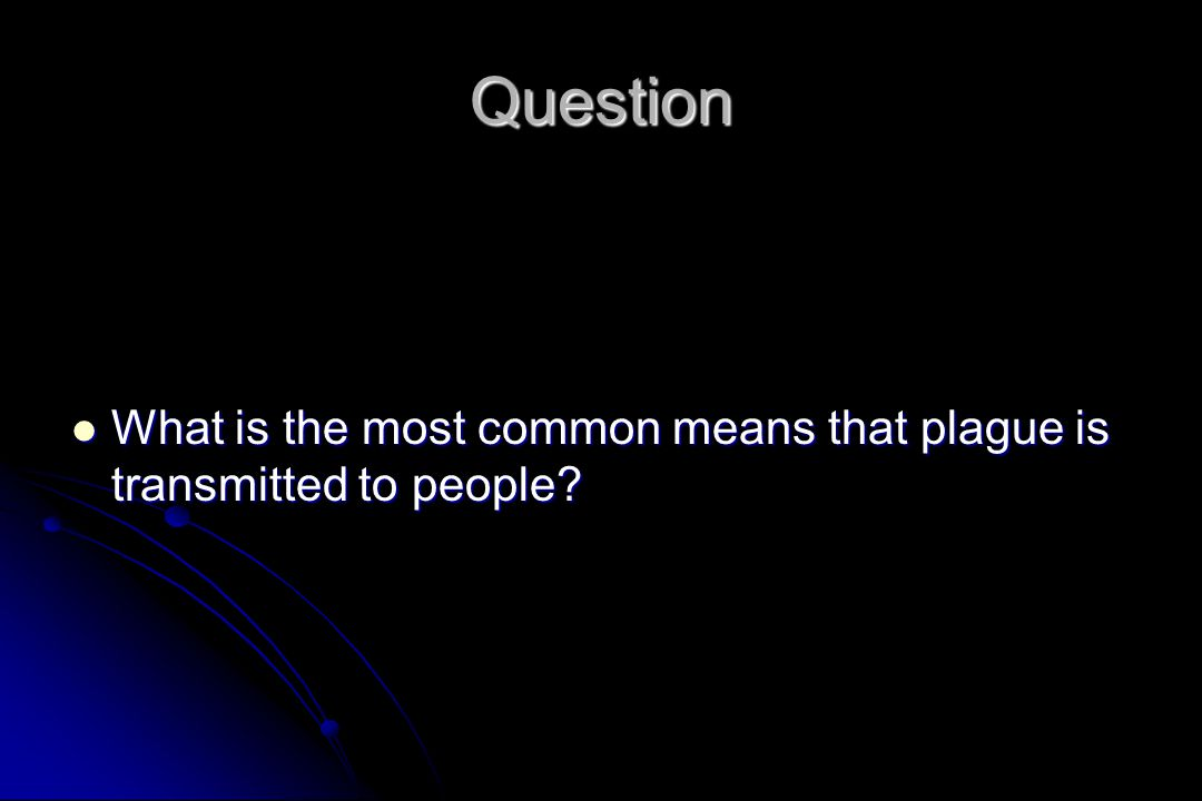 Question What is the most common means that plague is transmitted to people