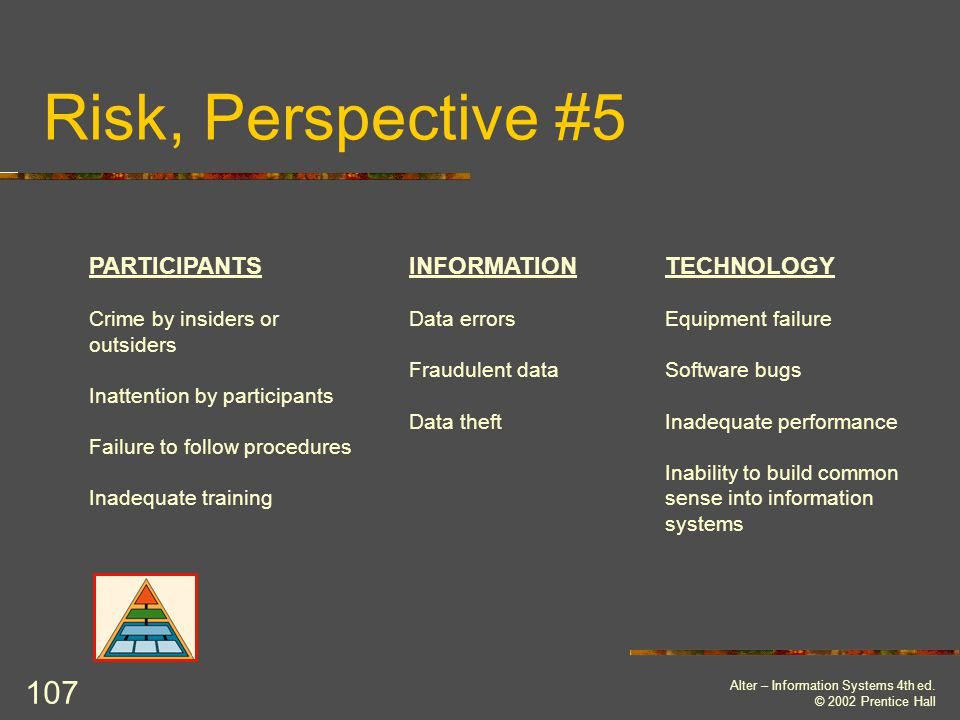 Risk, Perspective #5 PARTICIPANTS INFORMATION TECHNOLOGY