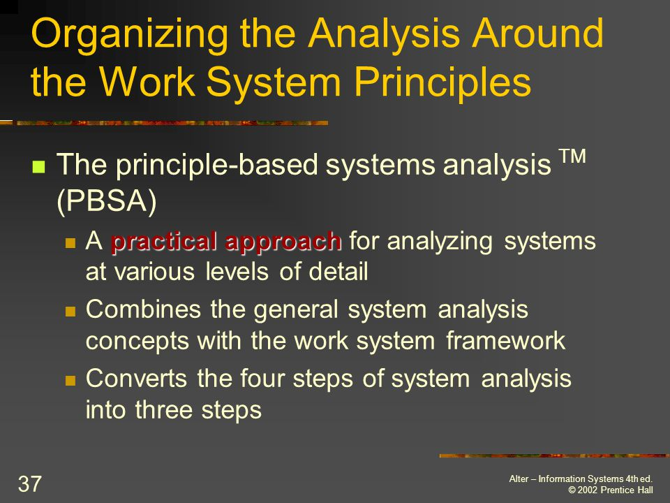 Organizing the Analysis Around the Work System Principles
