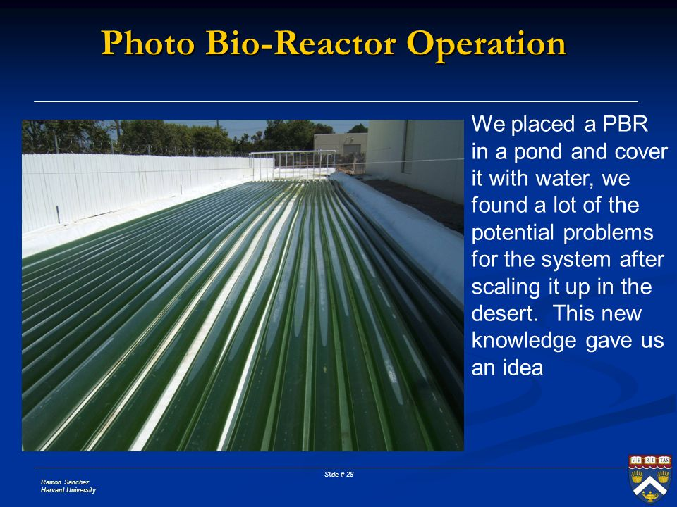 Photo Bio-Reactor Operation