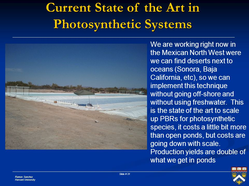 Current State of the Art in Photosynthetic Systems