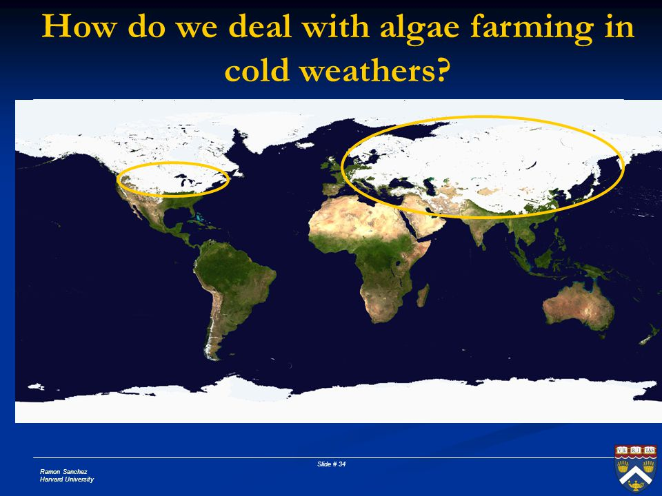 How do we deal with algae farming in cold weathers