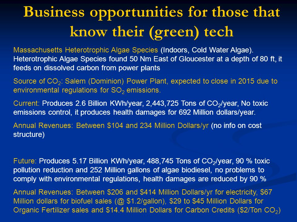 Business opportunities for those that know their (green) tech