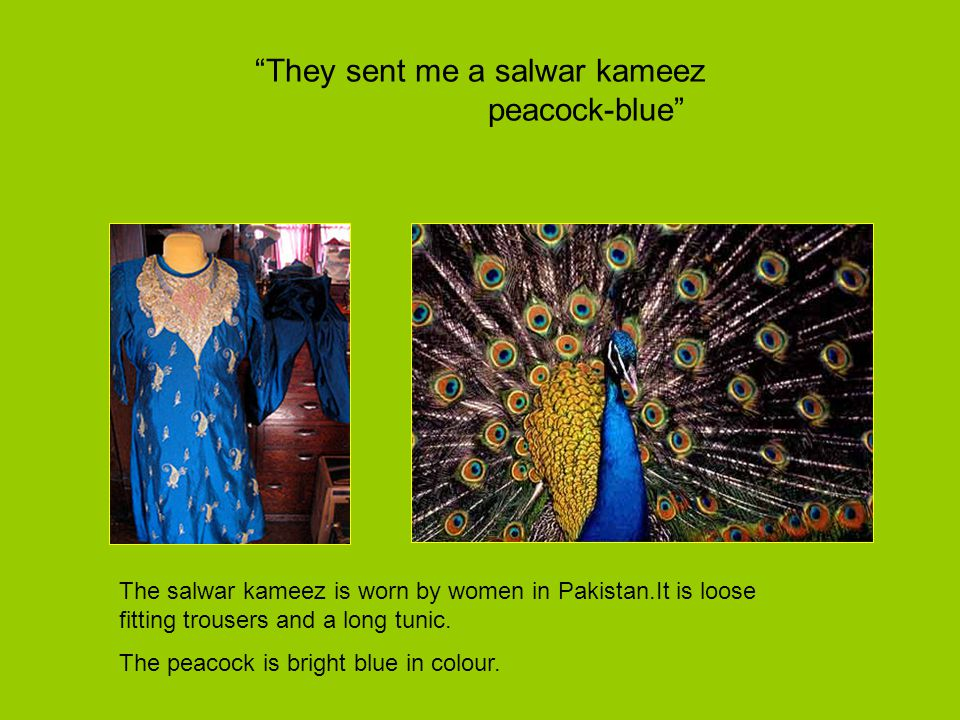They sent me a salwar kameez peacock-blue
