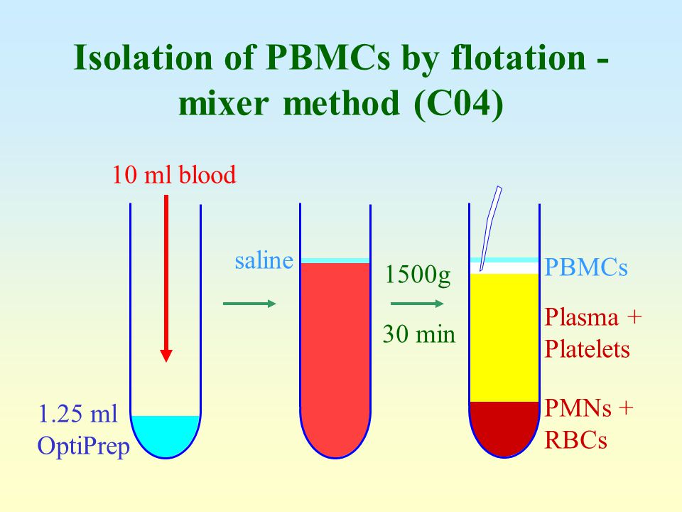 Isolation of PBMCs by flotation - mixer method (C04)