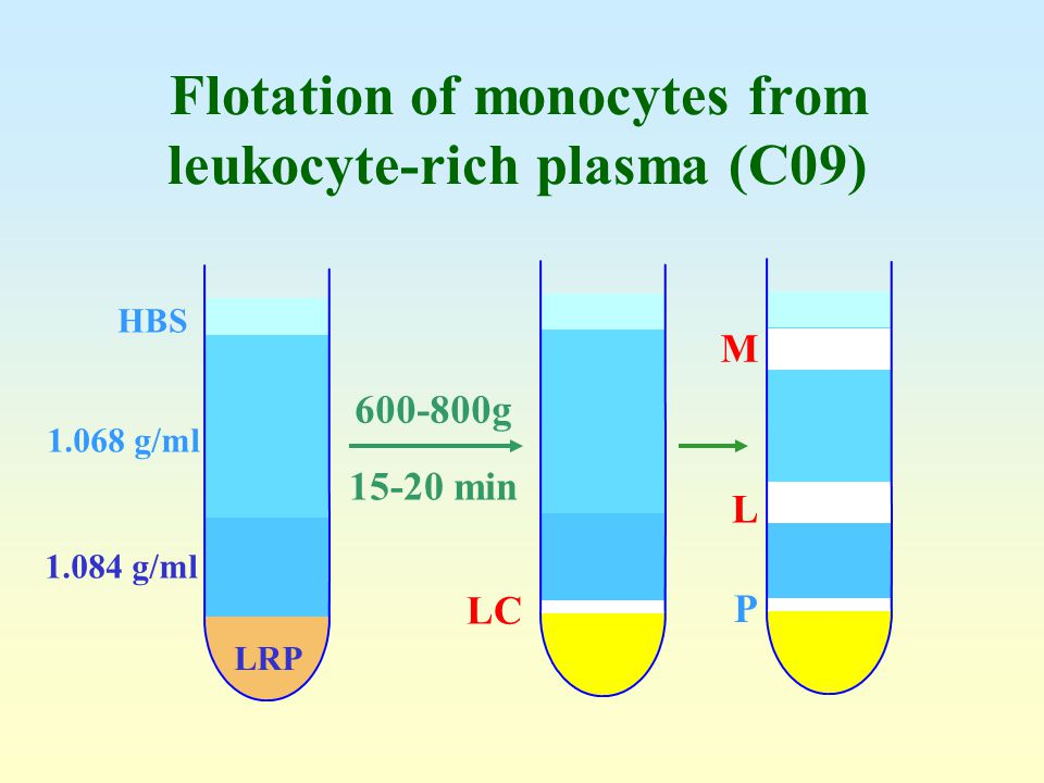 Flotation of monocytes from leukocyte-rich plasma (C09)