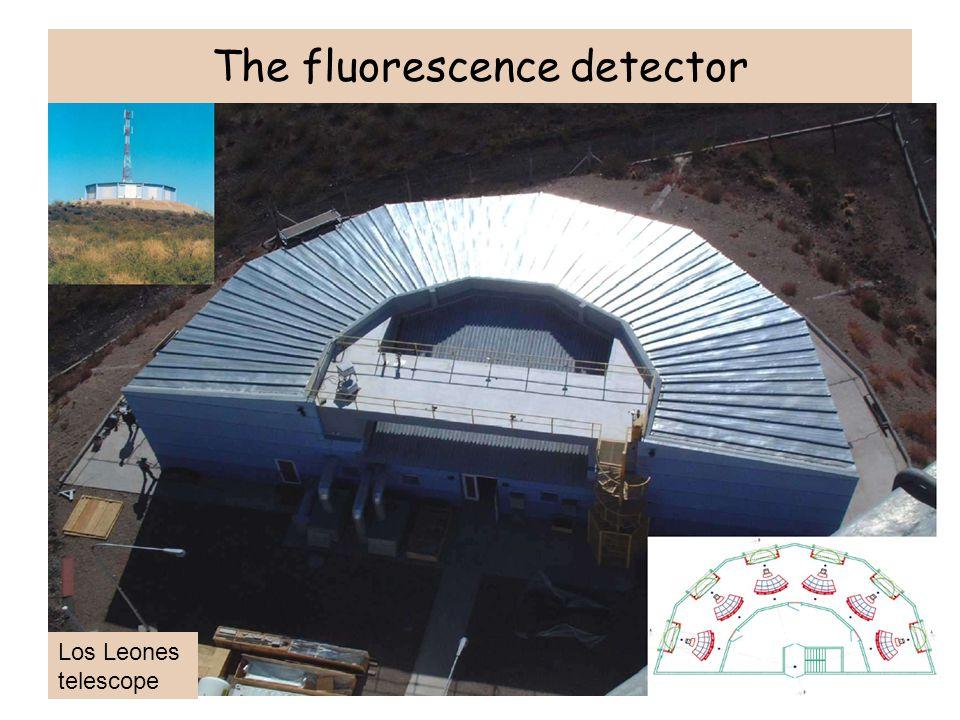The fluorescence detector