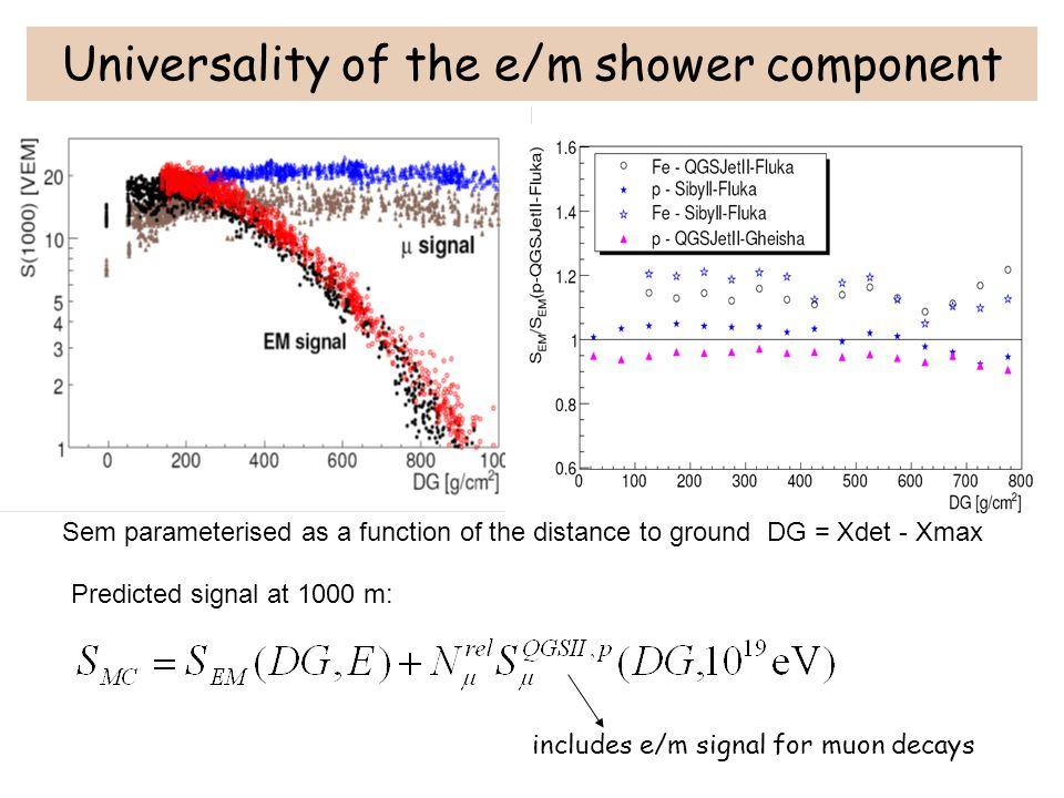 Universality of the e/m shower component