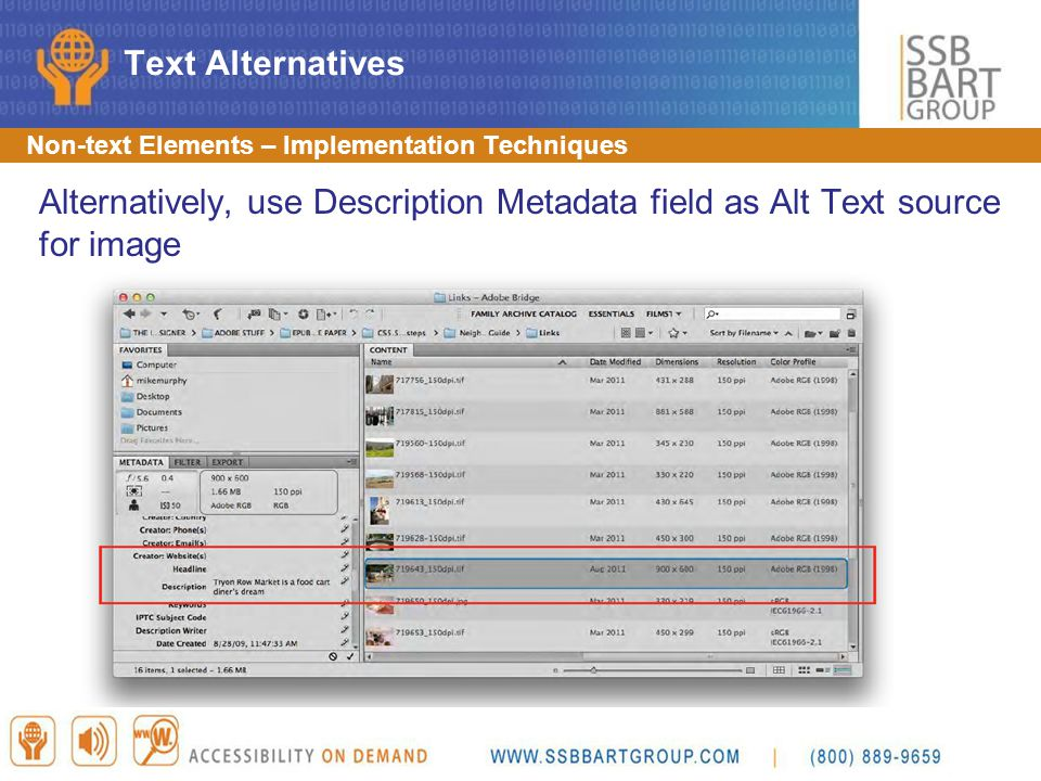 Text Alternatives Non-text Elements – Implementation Techniques. Alternatively, use Description Metadata field as Alt Text source for image.