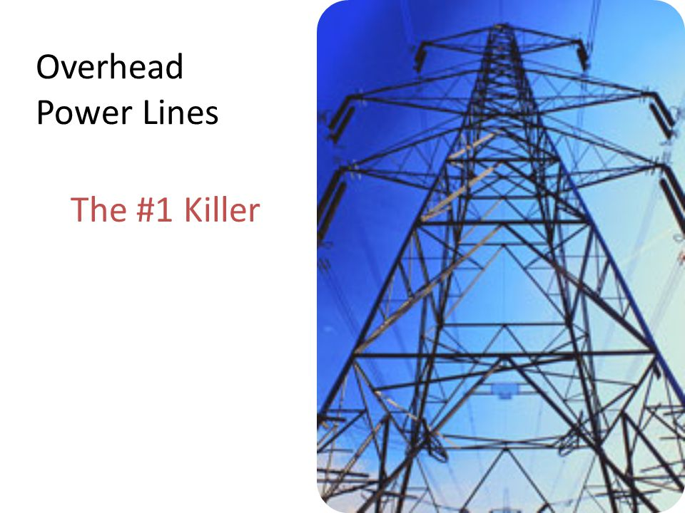 Overhead Power Lines The #1 Killer Trainer Notes: