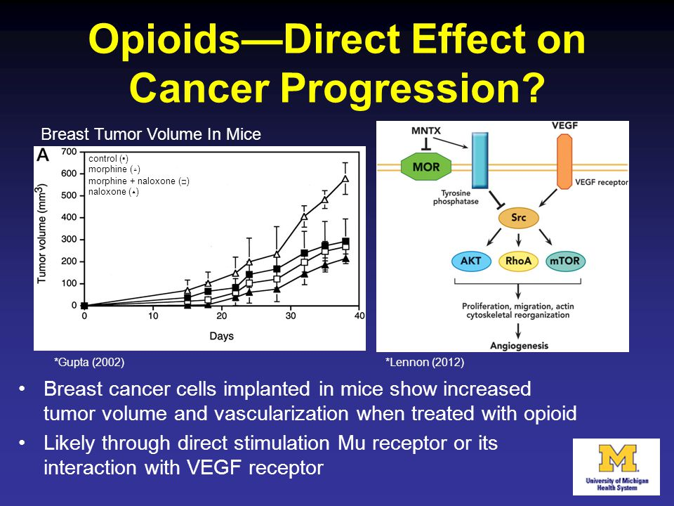 Opioids—Direct Effect on Cancer Progression