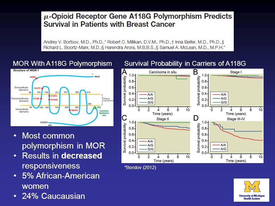 Most common polymorphism in MOR Results in decreased responsiveness