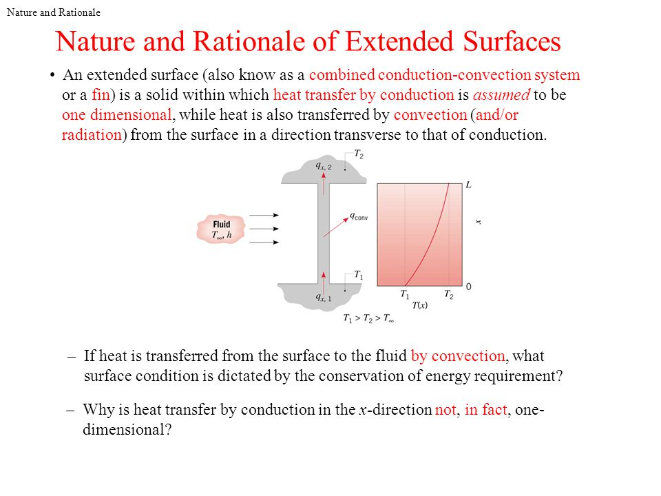 Nature and Rationale of Extended Surfaces