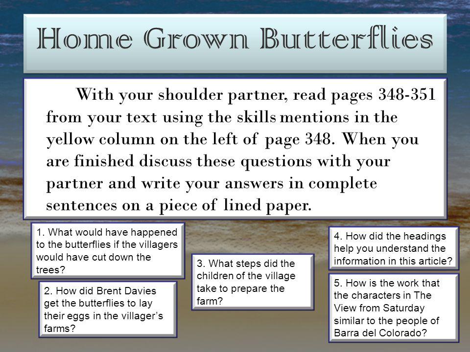 Home Grown Butterflies