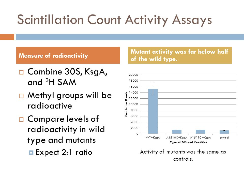 Scintillation Count Activity Assays