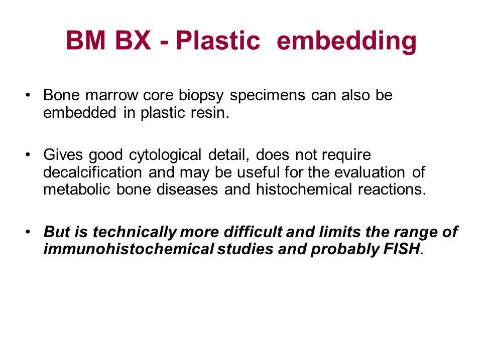 BM BX - Plastic embedding