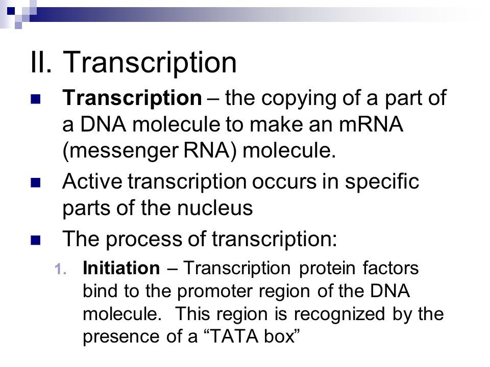 II. Transcription Transcription – the copying of a part of a DNA molecule to make an mRNA (messenger RNA) molecule.