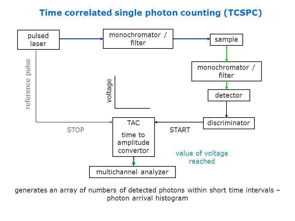 Time correlated single photon counting (TCSPC)